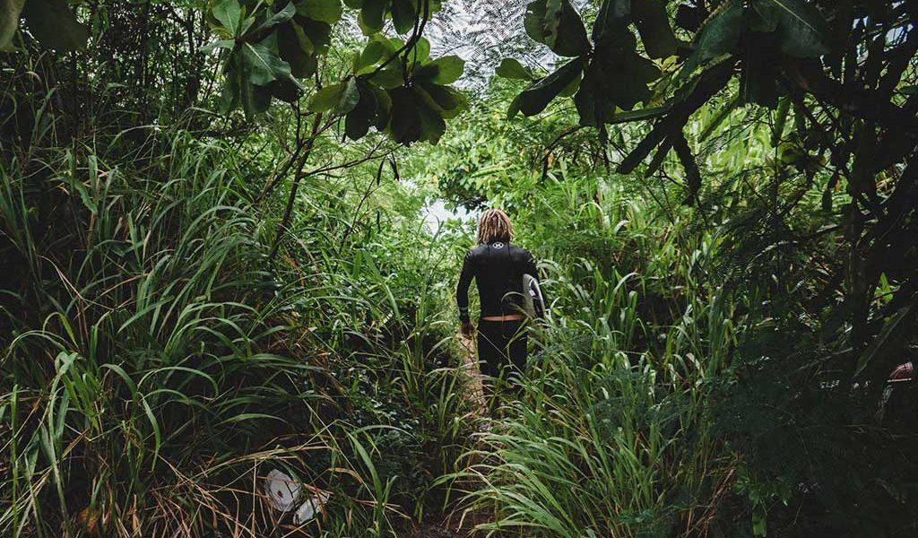 Dreadlocks und Surfen. Dreadlocks im Jungle